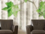 carta-da-parati-design-Ivy-visual